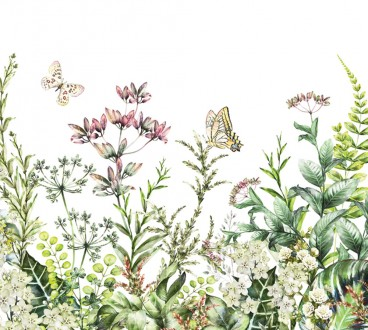 Fotomural Butterflies Garden A08-M1028-3 Fotomural Butterflies Garden A08-M1028-3
