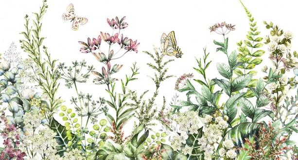 Fotomural Butterflies Garden A08-M1028-5 Fotomural Butterflies Garden A08-M1028-5