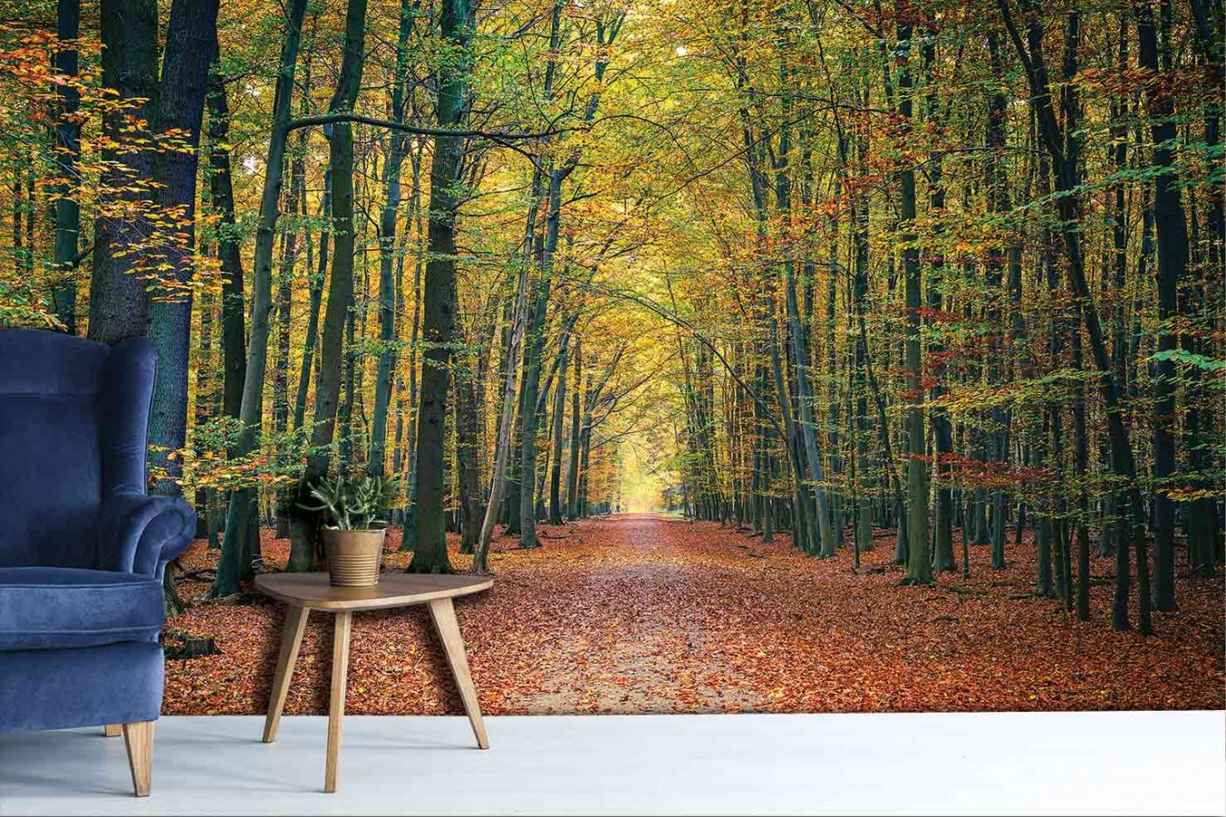 Fotomural Fall Landscape A08-M877   A08-M877