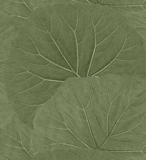 Papel pintado Amazonia Leaves 115138995 Papel pintado Amazonia Leaves 115138995