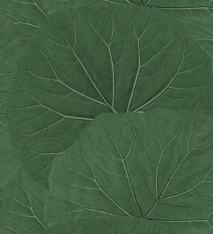Papel pintado Amazonia Leaves 115138996 Papel pintado Amazonia Leaves 115138996