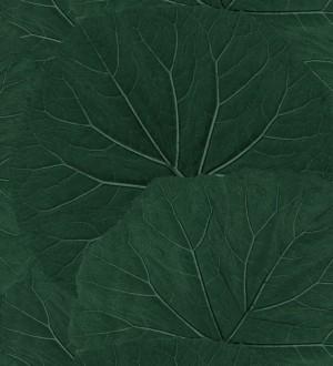 Papel pintado Amazonia Leaves 115138997 Papel pintado Amazonia Leaves 115138997